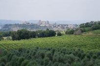 View of Orvieto2-Winery