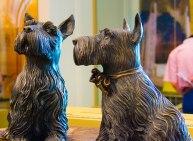 Barney & Miss Beasley